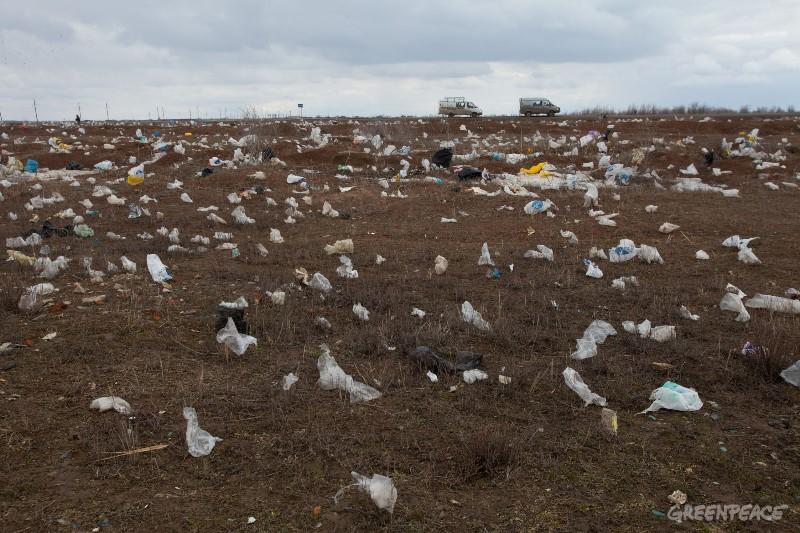 Запрет на пластиковые пакеты
