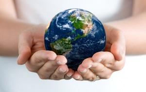 Год экологии подходит к концу
